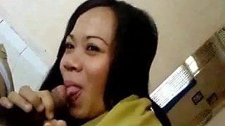 indonesia-civil servant bj