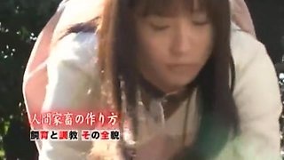 Exotic Japanese girl Mika Osawa in Hottest Compilation, Interview JAV scene